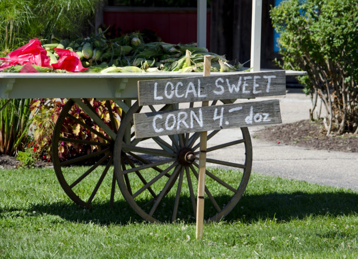 Farmstand sweet corn